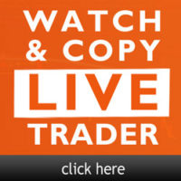 live trading sessions